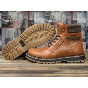 Зимние ботинки на меху Clarks Extreme Comfort, рыжие (31071) размеры в наличии ► [ 45 (последняя пара) ]