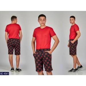 Спортивный костюм BD-4541 (46, 48, 50, 52)