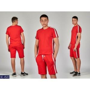 Спортивный костюм BD-4543 (46, 48, 50, 52)
